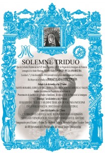 Cartel Triduo a N.M. la Virgen de la Amargura 2014.